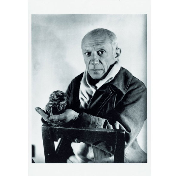 Picasso. FMC
