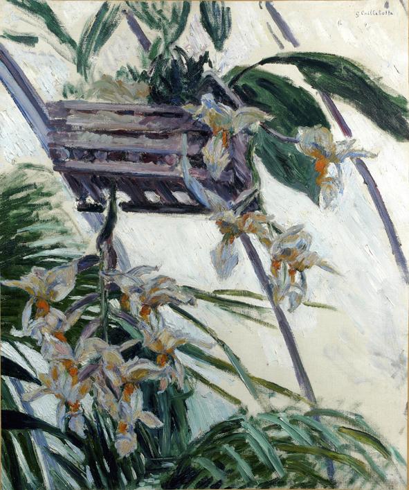 Foto 5: Orquídeas, 1893 Óleo sobre lienzo. 5,3 x 54 cm. Colección privada